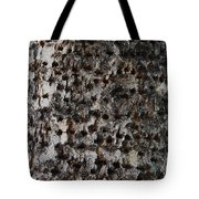 Woodpecker Holes In The Apple Tree Tote Bag