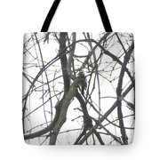 Woodpecker In The Forest Tote Bag