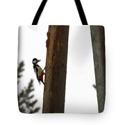 Woodpecker Workshop  Tote Bag
