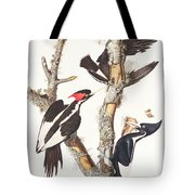 Woodpeckers Tote Bag by John James Audubon