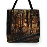 Woods - 1 Tote Bag