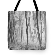 Woods In Mist, Stagshaw Common Tote Bag