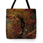 Woods In Oak Creek Canyon, Arizona Tote Bag