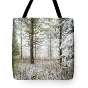 Woods In Winter At Retzer Nature Center  Tote Bag