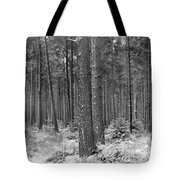 Woods In Winter, Slaley Tote Bag