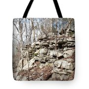 Woods Of Lake Guntersville Tote Bag