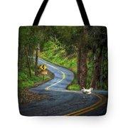 Woods Road 1 - Summer Tote Bag