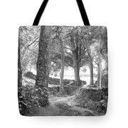 Woods, Troutbeck, Windermere Tote Bag
