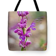 Woolly Blue Curls In Rancho Santa Ana Botanic Garden In Claremont-california  Tote Bag