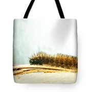 Wooly Worm Tote Bag