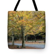 Words End State Park Drive Tote Bag