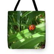 World Of Ladybug 1 Tote Bag