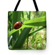 World Of Ladybug 2 Tote Bag