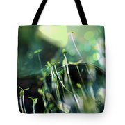 Worlds Collide - New Life Tote Bag