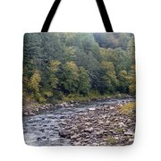 Worlds End State Park Loyalsock Creek Tote Bag
