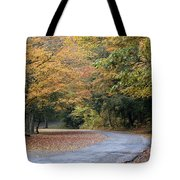 Worlds Ends State Park Road Tote Bag