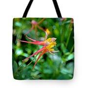 Wp Floral Study 3 2014 Tote Bag