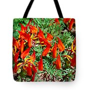 Wp Floral Study 6 2014 Tote Bag