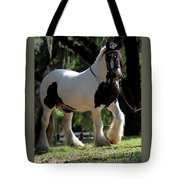 Wr The Big Son Of Bok #2 Tote Bag