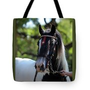 Wr The Big Son Of Bok Tote Bag