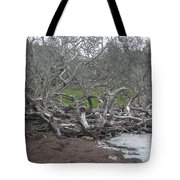 Wrack And Driftwood Tote Bag