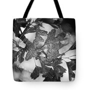 Wrapped Leaves Tote Bag