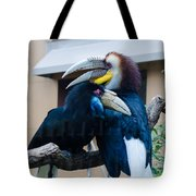 Wreathed Hornbills Tote Bag