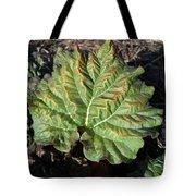 Wrinkled Green Rhubarb Leaf Tote Bag