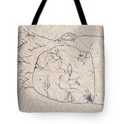 Wrinkled Masterpiece  Tote Bag