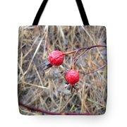 Wrinkled Wild Rose Hips Tote Bag