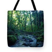 Wyeth Creek Tote Bag