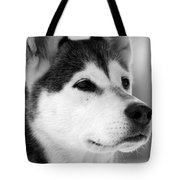 Wylow Tote Bag