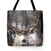 Wyoming Buck Tote Bag