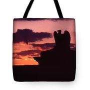 Wyoming Valley On My Mind... Tote Bag