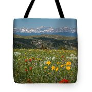 Wyoming's Winds Tote Bag