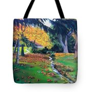 Wyomissing Creek Tote Bag
