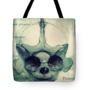 X Ray Terrestrial No. 13 Tote Bag by Jane Linders