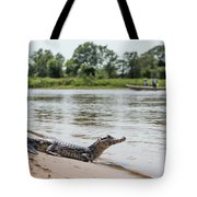 Yacare Caiman On Beach With Passing Boat Tote Bag