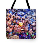 Yachats Oregon - Low Tide Treasures Tote Bag