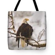 Yakama Canyon Eagle Tote Bag