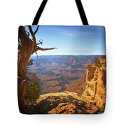 Yaki Point Tote Bag by Susan Rissi Tregoning