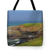 Yaquina Head Lighthouse And Bay Tote Bag