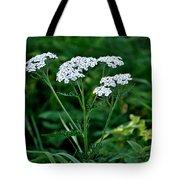 Yarrow Flowerheads Tote Bag