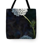 Yarrow In Stages Tote Bag