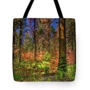 Yosemite In The Fall Tote Bag