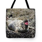 Yawning Harbor Seal - Oregon Coast Tote Bag