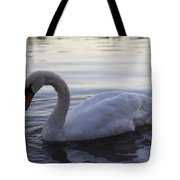 Ydan S Dream Tote Bag