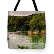 Ye Olde Swimmin Hole Tote Bag