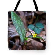 Yelllow Trout Lily 1 Tote Bag