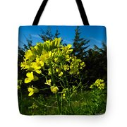 Yellow Against Blue Tote Bag
